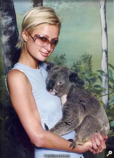 Paris poses with a koala.