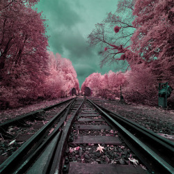 via The Surreal, Infrared Photography of David Keochkerian | Colossal)