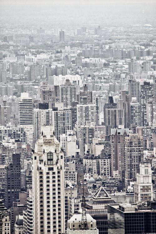 nosens:  NYC#090 (by wbsloan)