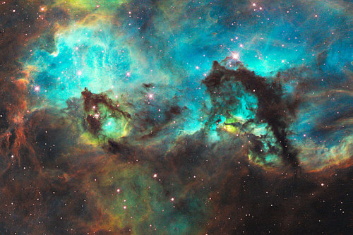 distant-traveller:  The Seahorse of the Large Magellanic Cloud  It may look like a grazing seahorse, but the dark object toward the image right is actually a pillar of smoky dust about 20 light years long. The curiously-shaped dust structure occurs in our neighboring Large Magellanic Cloud, in a star forming region very near the expansive Tarantula Nebula. The energetic nebula is creating a star cluster, NGC 2074, whose center is visible just off the top of the image in the direction of the neck of the seahorse. As young stars in the cluster form, their light and winds will slowly erode the dust pillars away over the next million years.  Image credit: NASA, ESA, and M. Livio (STScI)