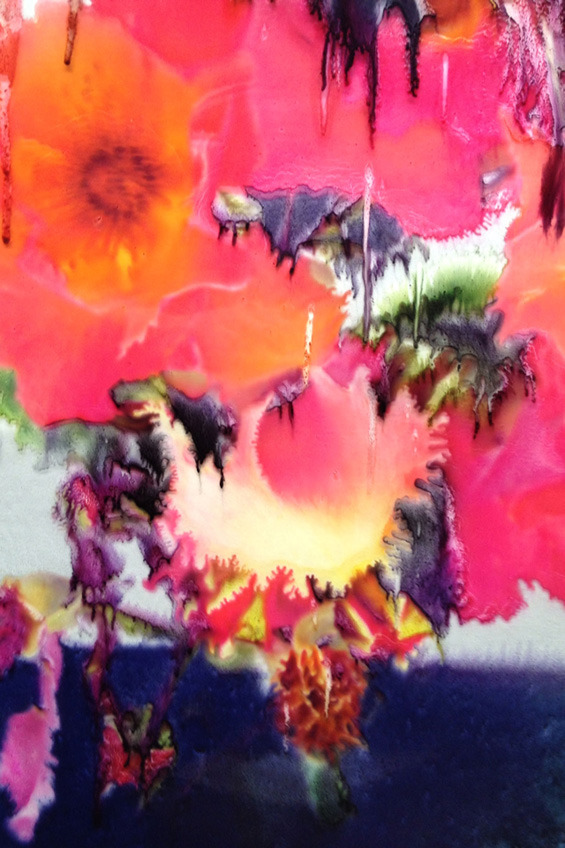Nick Knight's Melting Floral Photomanipulations
