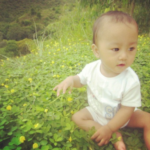 Baby Marcus on a little yellow flower bed on top of the mountains