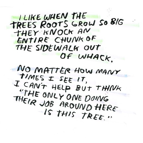 """The only one doing their job around here is this tree."" — @dallasclayton (via)"