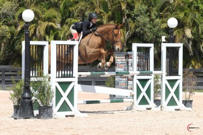 breathedreamride:  Katherine and Simba in the Maclay at WEF! I did not take this picture. They are such a great pair.