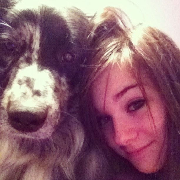 She's just the best #australianshepherd #aussie