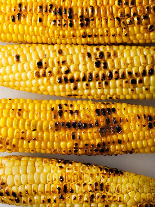 Daily Bite: The Secret to Great Grilled Corn Check out all of our delicious Daily Bite recipes here!