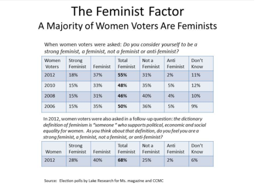ilovecharts:  More Than Half of Women Voters are Feminists  And at least 13% of women understand feminism as something other than pushing for equal rights. Hm.