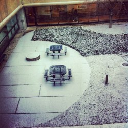 Powdered sugar covered hospital courtyard #pretty #snow #clintontownship #michigan  (at Henry Ford Macomb Hospital)