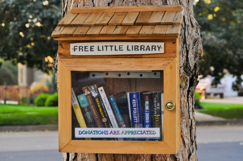 ellistrations:  book stand in Fort Collins, Colorado.