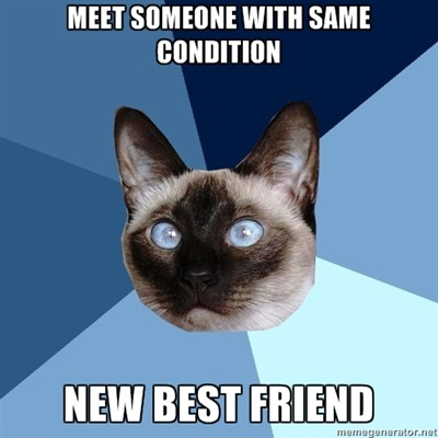 "chronicillnesscat:  [Image: 6-piece blue colored background with a Siamese cat.Text reads: ""Meet someone with same condition as you. New best friend.""]"