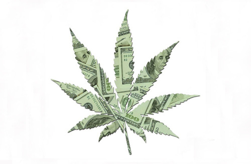 "vicemag:  Get Rich or High Trying: The Coming Age of Corporate Cannabis   ""At this moment in history, you've got to choose between being in favor of legalization, or being against 'the system.'"" Mason Tvert is leading a quick tour of what he irreverently describes as the Marijuana Manor—a genteel, three-story, historically-registered, 1880s-era brick and stained-glass building in downtown Denver that was recently converted into permanent office space for a consortium of do-gooders fighting to make legal cannabis work in America. The building houses four separate activist organizations, a trade association, and a law firm. Tvert is clad in a conservative suit jacket and tie worn above a pair of faded blue-jeans—an ensemble compiled in deference to a remote television appearance earlier in the day that shot him from the waist up. His clashing outfit offers an unintended statement on the split-personality of the pot world right now: Business in the front, party in the back. Last November, Tvert certainly had plenty of reason to celebrate, after heading a historic campaign that saw voters in Colorado approve Amendment 64 by a wide margin, ushering in a new era of state-legal commercial cannabis cultivation and retail sales of up to an ounce for all adults 21 and over. A similar ballot initiative in Washington State also passed easily on the unforgettable night when pot outperformed the president, while making headlines around the world. To date, lawmakers in both states continue to work out exactly how to implement the herb-friendly will of their citizenry, ever-mindful that a miraculous crop that can't kill you, won't hurt you, and just might heal you remains fully illegal under federal law, even if you've got terminal cancer and floor seats to see Phish. Despite the fact that smoking a joint remains a lot less dangerous than swilling booze. Not to mention that the same federales imposing cannabis prohibition ultimately answer to a guy best known in his youth for ""roof hits,"" ""interceptions,"" and sharing some righteous Maui Wowie with the Choom Gang. Continue"