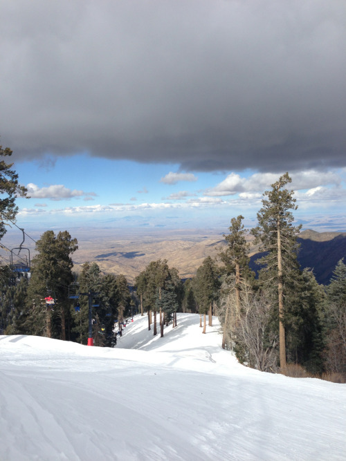 beauxnerfab:  View from the top of mount Lemmon ski valley.