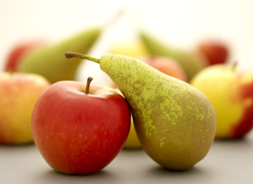 Activists win a victory against antibiotics in organic apple and pear production  After a meeting in Portland, OR this week, the National Organic Standards Board (NOSB) rejected a petition to extend a loophole allowing the use of antibiotics in the production of organic apples and pears. The loophole will expire on October 21, 2014. The antibiotics in question, oxytetracycline and streptomycin, are used to treat fire blight in apple and pear production. However, safer biological methods using beneficial bacteria or yeast can also prevent fire blight from infecting new trees. Farmers who export to overseas markets already use the safer methods, as many countries outside of the US have banned the use of antibiotics in organic agriculture. The decision came after activists from Consumers Union (publisher of Consumer Reports), Food & Water Watch, and the Center for Food Safety delivered more than 30,000 petition signatures urging the NOSB to reject the use of antibiotics in organic farming. The groups argued for rejection of the loophole in order to meet consumer expectations about the integrity of the organic label and to respond to mounting evidence that antibiotic-resistant bacteria is a serious threat to public health. Antibiotics are not allowed in any other types of organic food, including production of organic livestock. In order to help farmers transition to antibiotic-free control methods, the Board also passed a resolution to encourage the USDA to investigate a transitional option for the emergency use of oxytetracycline until 2017. The agency must guarantee that any emergency use is extremely limited, ends as soon as possible and, most importantly, apples and pears from treated trees cannot be sold as organic.