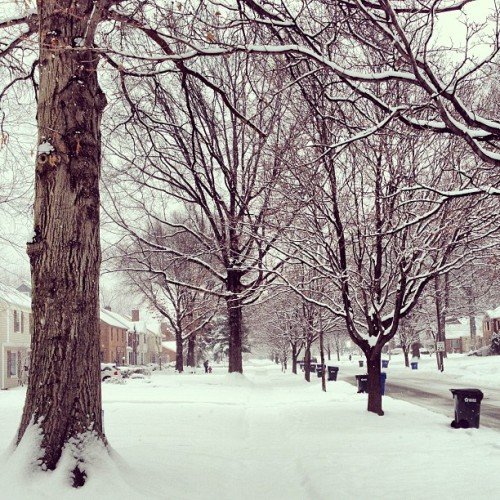 Back home to a Winter Wonderland (at Coffinberry Neighborhood)