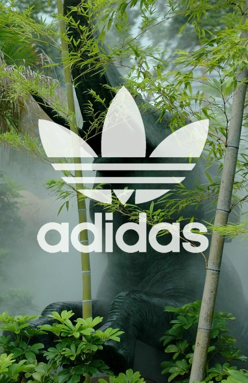 steezleo:  adidas edit .