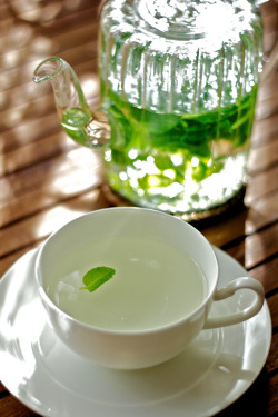 pictureperfectforyou:  mint tea (door mitayuu)
