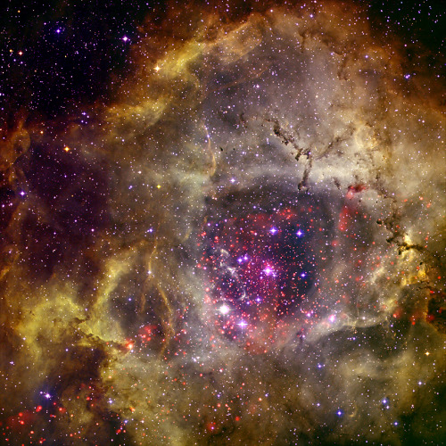 NGC 6240:GIGANTIC VAINAS NUBE DE GAS CALIENTE DE GALAXIAS QUE CHOCANSpace Telescope Science Institute's Muller Building (Photo credit: Wikipedia)  Galaxy M33 Chandra…View Post