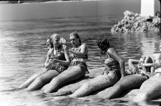 disneyland mermaids circa 1959