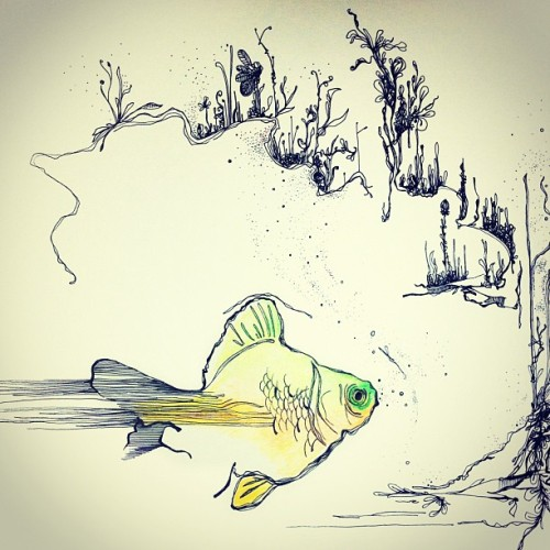 Fish number 2! #myriamwiesenfeld #art  #drawing  #fish