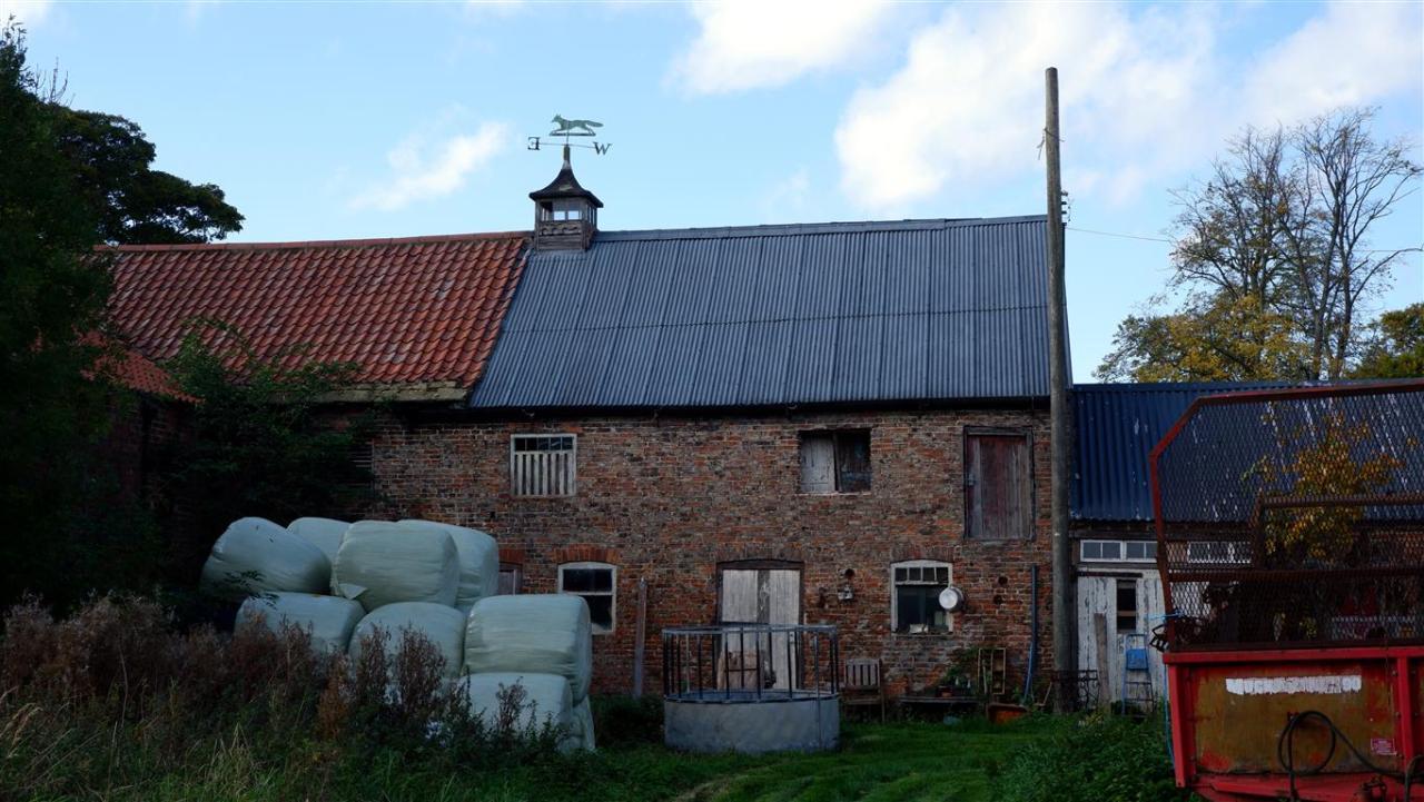 A Farmyard Scene. #Yard#Cottagecore#Fairycore#Dirtcore#Buildings#Aesthetic#Rural#Rustic#Farmcore#Farm Aesthetic#Country#Countrycore#Countryside#Cottage Aesthetic#Cottageblr#Fairy Aesthetic#Dirt#Dirt Aesthetic#Grandmacore#Warmcore#Softcore