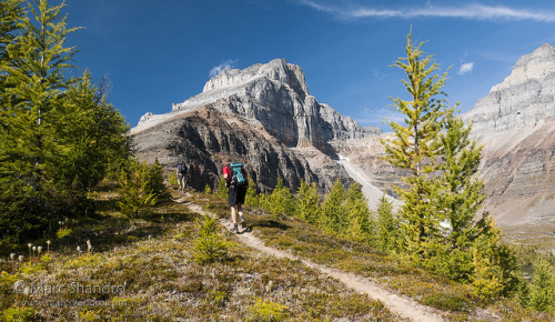 "Hiking to Eiffel Peak Summit - Banff - Canadian Rockies on Flickr.Via Flickr: Gorgeous fall hiking in the Canadian Rockies! It's my favorite time of year when you get conditions like this. Larch Valley is an extremenly popular hike at this time of year when people enjoy the spectacular golden larches.  That larch on the right will be golden yellow in another week or so. For a higher perspective ""go left"" and up that nice ramp to the summit of Eiffel Peak. It's about 7 kilometers and 1250 meters of elevation gain with some moderate scrambling near the summit. The 360 degree views from this summit is one of my favorites (of about 40 peaks I've had the good fortune to stand upon)."