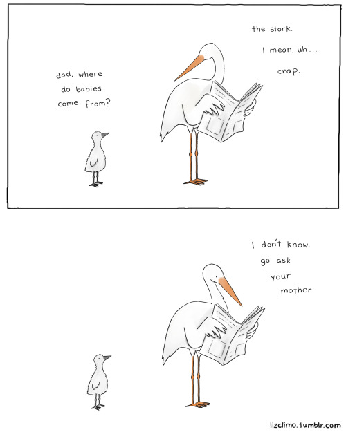 lizclimo:  where do baby storks come from?  for my new friends at HowToBeADad.com follow them on tumblr!