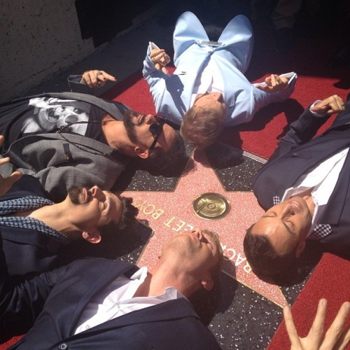 backstreetboys:  Our star! #bsbwalkoffame #bsbgetsahollywoodstar