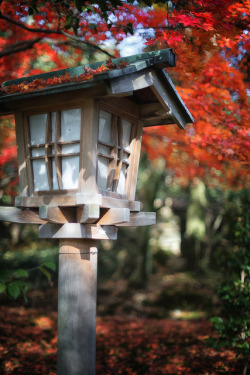 japanlove:  金沢の兼六園 - Kenroku-en Kanazawa by CaDs on Flickr.