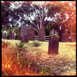 Isle of the dead, Port Arthur on Flickr.