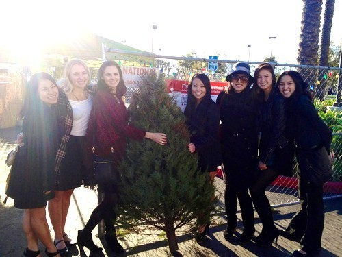 christmas tree delivery with some of my best friends