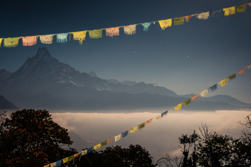 rucksackandacamera:   Long exposure of Fish Tail Mountain (Machhapuchhre), the holiest mountain in Nepal. It's so holy in fact, that climbing it is illegal. This picture was taken during full moon in January 2013. The fog that engulfed us for most of the day finally descended into the valley during the night, forming a beautiful white lake of clouds washing around the foothills of the 7000m giants.