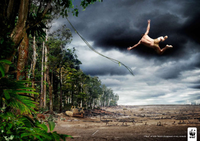 15 km² of rain forest disappears every minute. WWF Ad by Uncle Grey