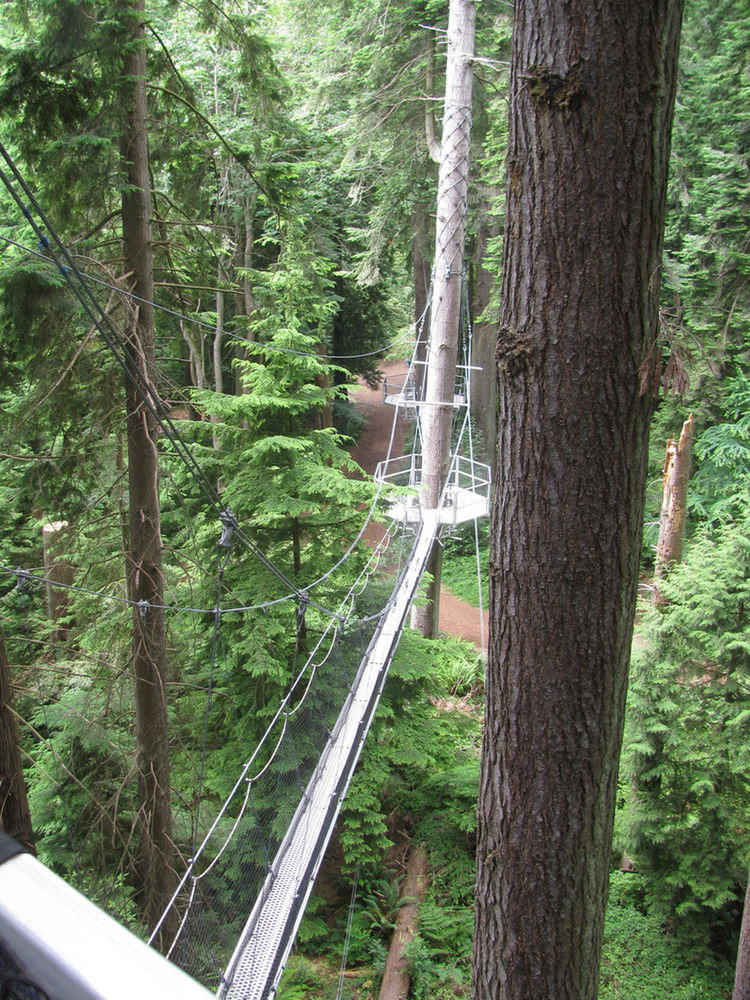 The Greenheart Canopy Walkway at the UBC Botanical Garden & Centre for Plant Research