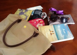 virginiabred:  New Blog Post: Summer Bag Essentials.
