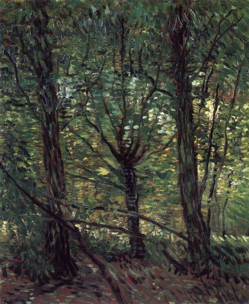 allegoryofart:  Trees and Undergrowth,Vincent van Gogh, 1887