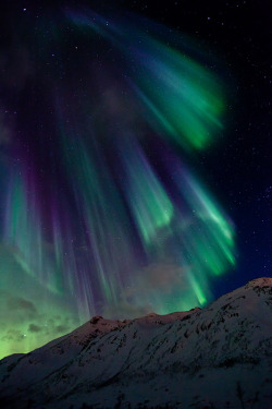 dearscience:  Aurora Borealis Norway by Marco Egeter