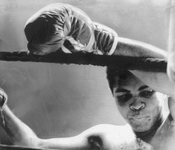 "boxingsgreatest:  ""Only a man who knows what it is like to be defeated can reach down to the bottom of his soul and come up with the extra ounce of power it takes to win when the match is even.""— Muhammad Ali"