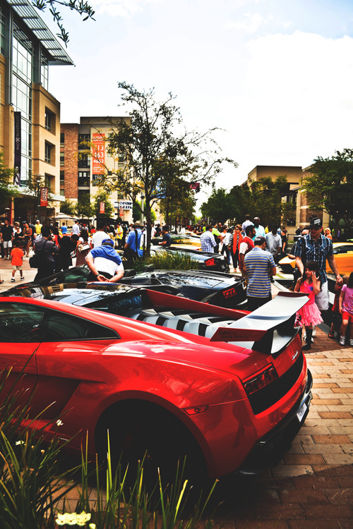 diamond-fresh:  mistergoodlife:  Super Trofeo Stradale  ~