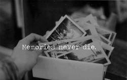 goodblackhopes:  Never!:'(