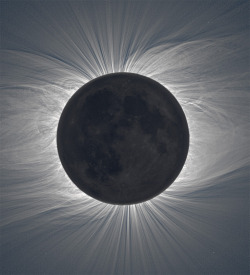 Stunning detail in this composite solar eclipse image. (via Composite Image of the Moon Taken from 47 Photos Reveals Solar Corona During a Total Solar Eclipse | Colossal)