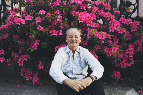Bill Murray Photographed by Olivia Rae James