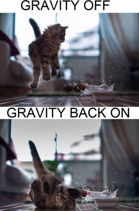 9gag:  Gravity on & off