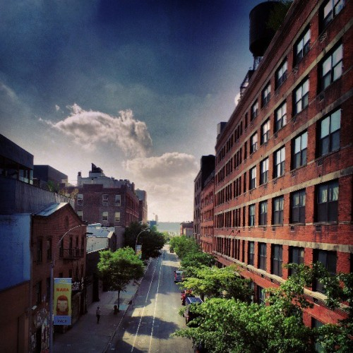 I love New York (at Highline Garden)
