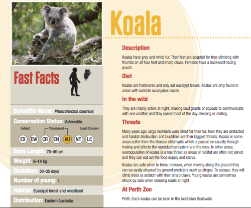 adiemtocarpe:  Over at the Perth Zoo Website they have a ton of printable animal fact sheets! PERFECT for my lesson. Winner winner chicken dinner.  useful. Thanks