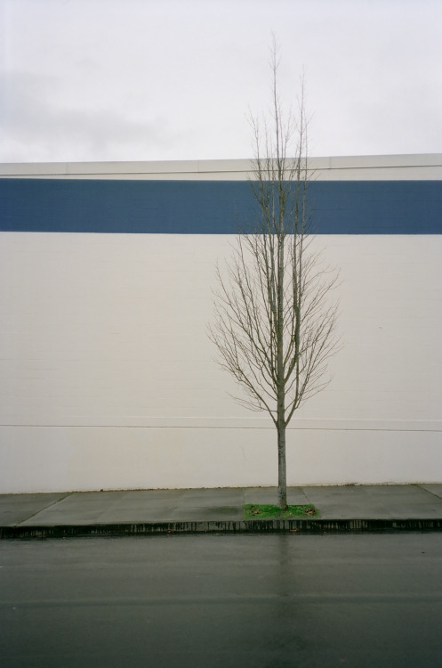 pupilphoto:  before  Looks like the side of the Fred Meyer's on Hawthorne and 39th.
