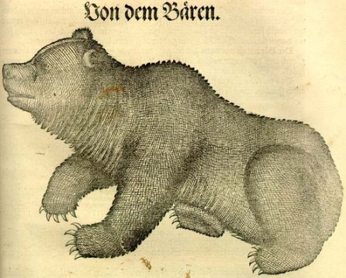 Because Cambridge University had a rule forbidding dogs, Lord Byron kept a pet bear while he was a student there.