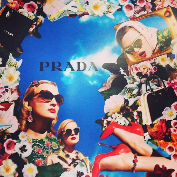 Prada Collage at OCAD Grad Ex