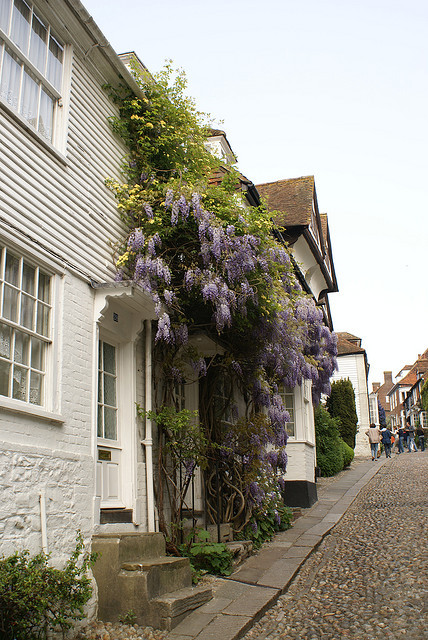 fuckitandmovetobritain:  Rye, East Sussex, England, UK