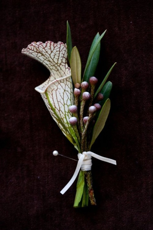 simple and elegant boutonniere