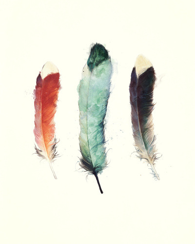 city-of-vultures:  Feathers by Amy Hamilton